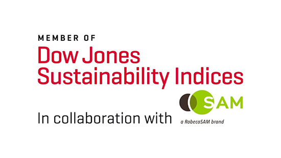 Dow Jones Sustainability Index logo