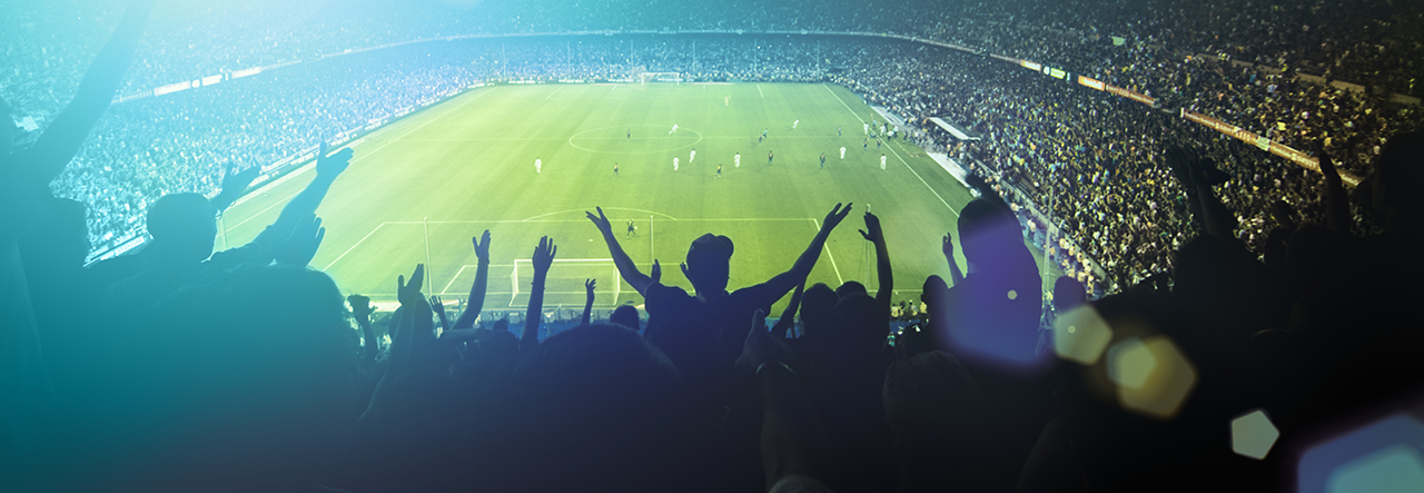 People cheering in a stadium