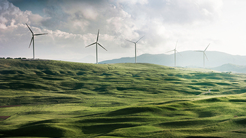 Wind turbines in a grassfield